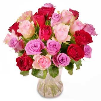 Romantiske Roser aarstidens blomster Valentinedag