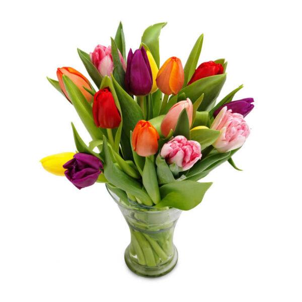 Mix tulipaner